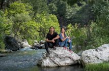 """""""We have become guardians"""": Turkey's accidental forest protectors"""